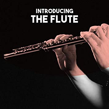 Introducing: The Flute