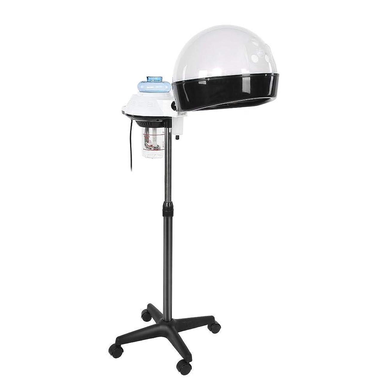 カバレッジすみません不承認ヘア 加湿器 パーソナルケア用のデザイン ホットミストオゾンヘアセラピー美容機器 個人用家庭用 (US)