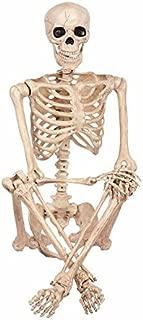 Best posable skeleton costco Reviews
