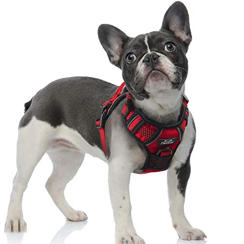 TwoEar Dog Harness, No Pull Reflective Harness Front Clip Easy Control Handle Adjustable Soft Padded Pet Vest for Puppy Small Medium Large Dogs Breed Pet(Small,Red)