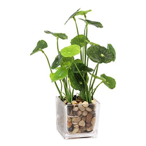 Aicvhin 人工観葉植物 光触媒 プレミアム 造花 観葉植物 簡単世話いらず フェイクグリーン ガラス鉢 (蓮の葉)
