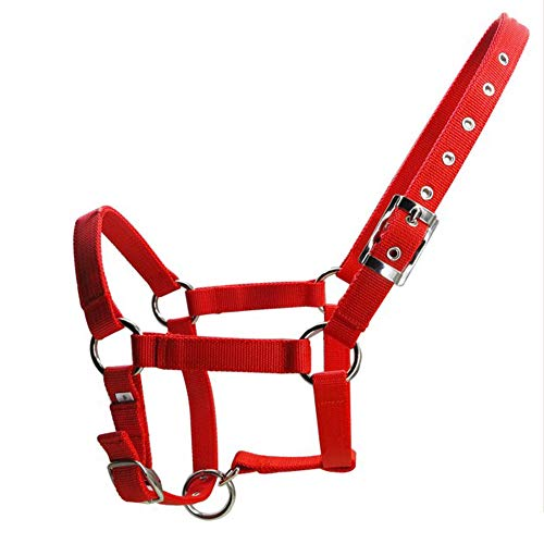UDRENM 6MM Thickened Horse Head Adjustable Nylon Horse Halter for Horses Riding Racing Equipment Training Rope(Red-L)