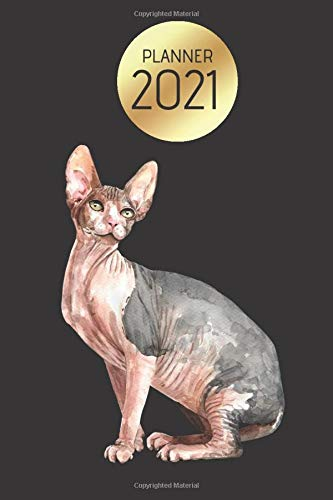 Planner 2021: Weekly, daily, simple planner 2021 with Sphynx Cat. Gold, black, blue, watercolor cover. Notebook for cats fans. Christmas gift for cats ... Organizer. Calendar 2021 Sphynx Cat.