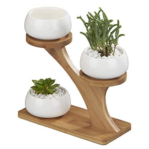 FLOWERPLUS Planter Pots Indoor, 3 Pack 3 Inch White Ceramic Decorative Small Round Succulent Cactus Flower Plant Pot with Tree Tier Bamboo Stand for Garden Kitchen Home Office Desk Decorations
