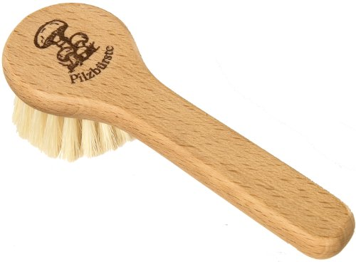 Redecker Natural Pig Bristle Mushroom Brush with Beechwood Handle, Gently and Thoroughly Cleans Mushrooms Without Water, 5 inches, Made in Germany