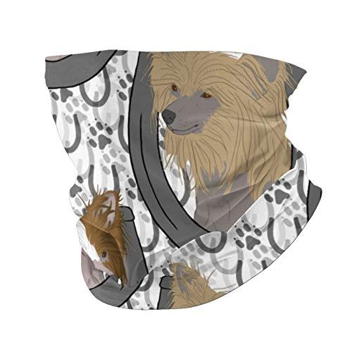 Ccycjasdkfewl Chino Crested Hairless Herradura Retratos Cara Cover Bufanda Protección UV Cuello Pasamontañas Variedad Cabeza Bufanda para Mujeres Hombres Negro con Bolsillo Interior