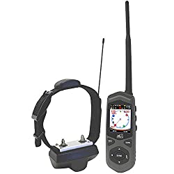 Best Wireless Electric Dog Fence - DE Systems TC1 Border Patrol GPS Fence and remote trainer