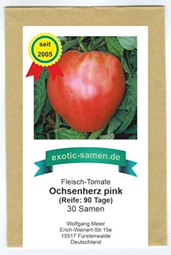 Pink-rote, süße, sehr gehaltvolle Riesen-Fleischtomate - bis 1,5 kg schwer - Ochsenherz - 30 Samen