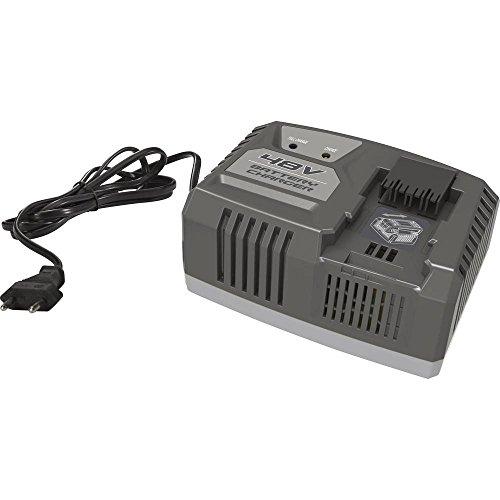 Alpina 270480120/16 Batterie Chargeur rapide Noir