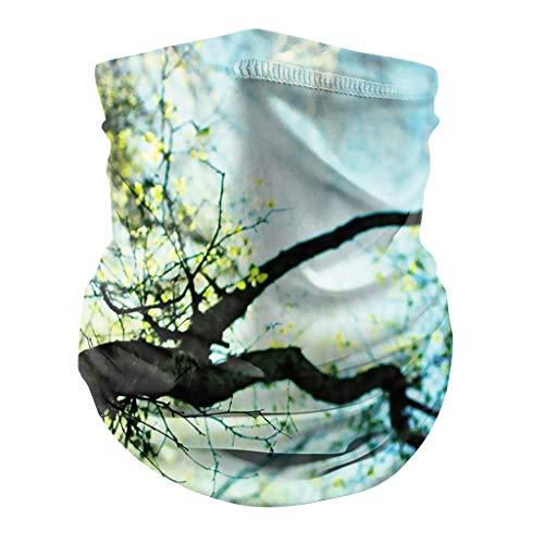 Briskorry Bedruckte Multifunktionstuch Atmungsaktiv Schlauchtuch Damen Halstuch,Herren Schlauchschal Outdoor UV Mund-Tuch Motorrad Fahrrad Joggen Schal Face Shield Cover