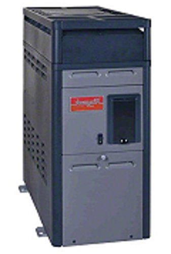 Raypak 014784 PR156AENC 150000 BTU Natural Gas Heater