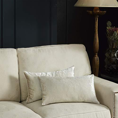 Gigizaza Marfil Terciopelo Almohada Cubre Caso Suave decoración Fundas de de cojín para sofá Dormitorio CocheCama Casa Decor 30x50cm ,Pack de 2