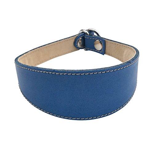 BBD Pet Products - Collare antiscivolo per levrieri, taglia unica, 3/4 x 45 a 45,5 cm, Royal