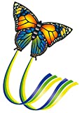 Paul Guenther- Butterfly Aquilone, Multicolore, 1151