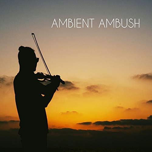 Ambient Ambush