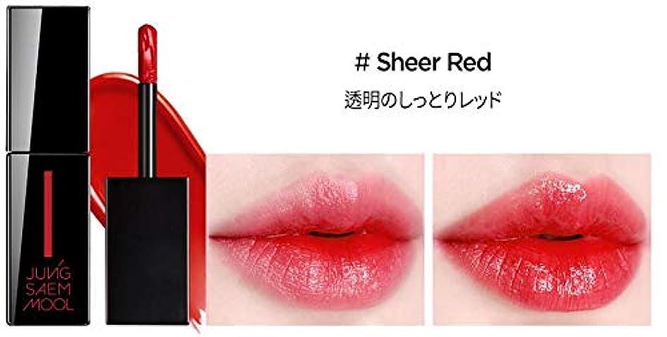 ネックレット哲学的苦しめるJUNGSAEMMOOL High Tinted Lip Lacquer/ハイティンテッドリップラッカー (# Sheer Red) [並行輸入品]