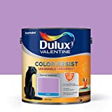 Peinture Color Resist Dulux Valentine - Lessivable et resistante pour Murs & Boiseries - aspect Mat Violet Persistant...