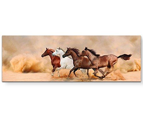 Paul Sinus Art Leinwandbilder | Bilder Leinwand 120x40cm Laufende Pferde in der Steppe