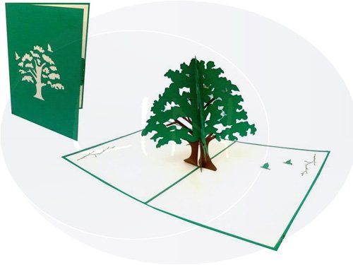 Lin, biglietti di auguri in 3D, biglietti pop-up di ringraziamento verde