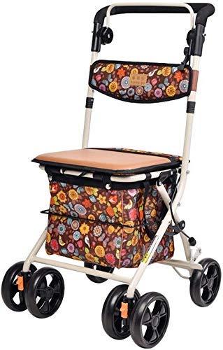 L-YINGZON andador Viejo cesta de la compra plegable portátil viejo carro de compras puede sentarse Walker SIDA