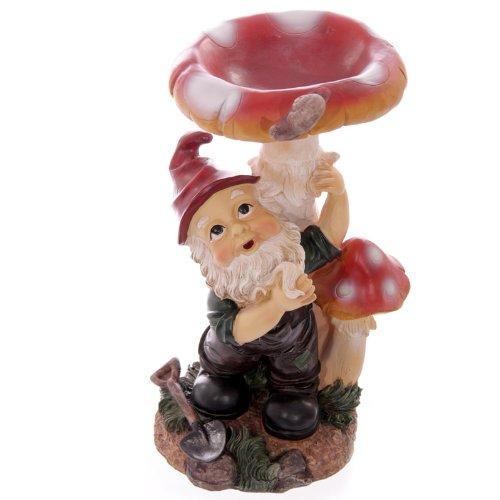 Cheeky Garden Gnome sous le champignon