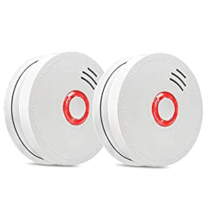 2 Packs Carbon Monoxide Detector for Home