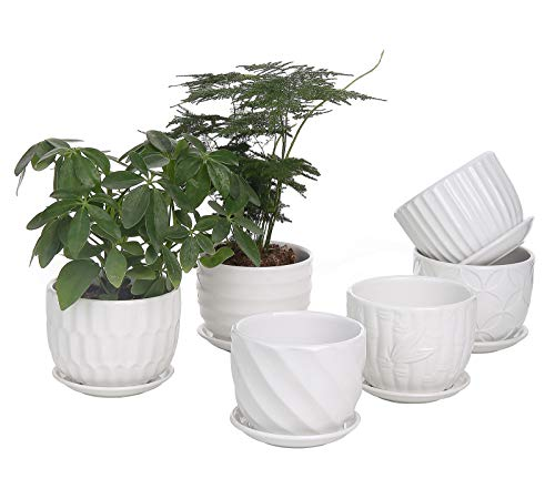 Planter Pots Indoor Outdoor Gardening Flower Containers for Snake Plants, Succulent, Herbs (Plants Not Included)