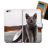 AQUOS sense4 lite SH-RM15 ケース 手帳型 ねこ写真 手帳ケース スマホケース カバー 猫 ネコ ねこ 動物 アニマル E0310020115502