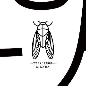 Cicada 매미