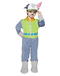 Top 10 Paw Patrol Costumes
