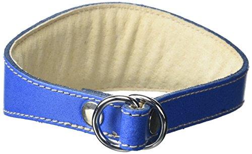 BBD Pet Products Whippet Collar Deslizante, Talla única, 3/4 x 12 a 14 Pulgadas, Royal