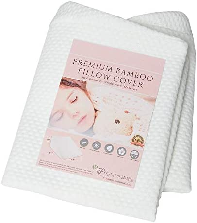 Bamboo Replacement Wedge Pillow Cover 24 x 24 x 10 with Zipper product image