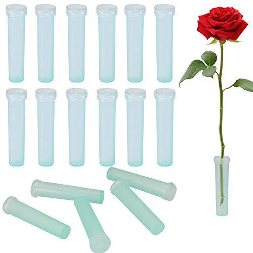 Nuluxi Blumen Wasserröhrchen Kunststoff Blume Fläschchen Klare Blume Röhren Florist Liefert Zubehör für Blumenarrangements Geeignet für Hochzeiten, Partys, Events oder bei Geschenken-100 Stück (7cm)