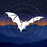 Echo Meter Touch Bat Detector: Listen to, record and identify bats using the Echo Meter Touch hardware module