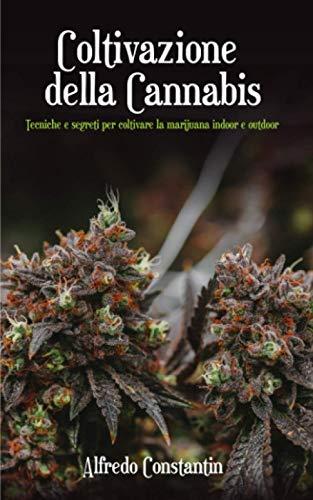Coltivazione della Cannabis: Tecniche e segreti per coltivare la marijuana indoor e outdoor