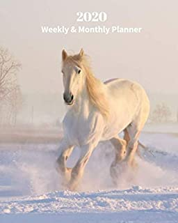 2020 Weekly and Monthly Planner: White Horse in the Snow - Monthly Calendar with U.S./UK/ Canadian/Christian/Jewish/Muslim Holidays– Calendar in Review/Notes 8 x 10 in.- Horse Animal Nature