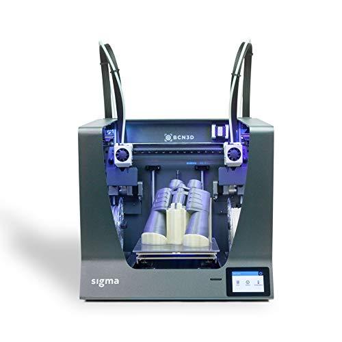 BCN3D Technologies - BCN3D Sigma R19