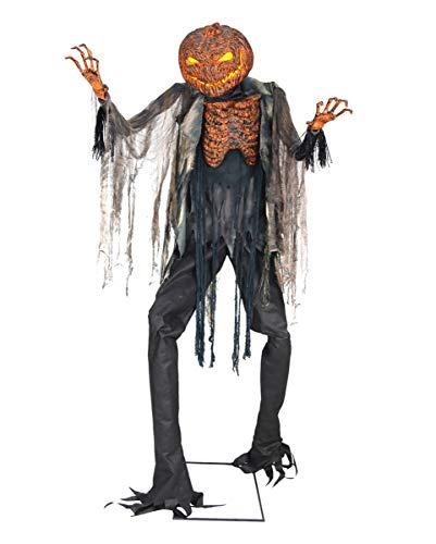 Horror-Shop Espantapájaros Calabaza Brillante Animatronic