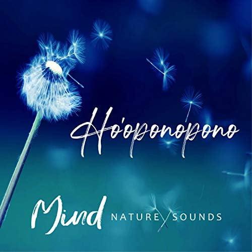 Yoga Music & Nature Sounds