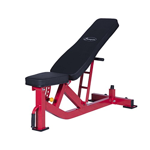 Soozier Ten-Position Adjustable Home Fitness Upper Body Weight Bench