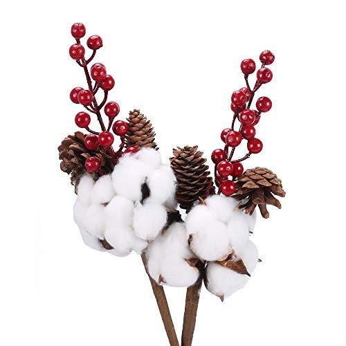 NAHUAA 2PZ Fiori Secchi Cotone Naturali con Pigne e Fiori di Cotone a Bacca Rossa Piante Finte per la Decorazione della Festa di Natale Giardino Casa Camera da Ufficio Cucina Matrimonio
