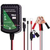 Cargador de batería de 12V batería de Plomo ácido Gel AGM 0,75 A Cargador automático de batería, Cargador de 3 Ciervos para automóvil, Motocicleta, cortacésped, Barco, motonieve