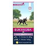 Eukanuba - Croquettes pour chiot de Grande Race -...