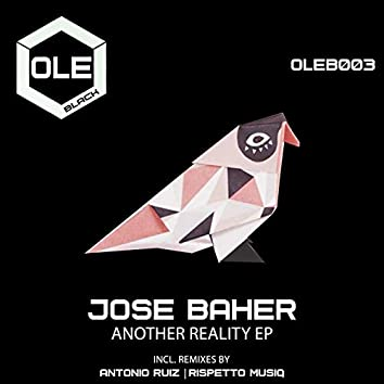 Another Reality EP