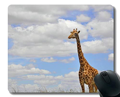 Mauspad Rutschfeste Naturkautschuk-Rechteck-Mauspads, Wolkenhimmelgiraffe der wild lebenden Tiere Gummi Mousepad Genähte Ränder