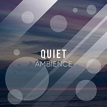 Quiet Ambience, Vol. 21
