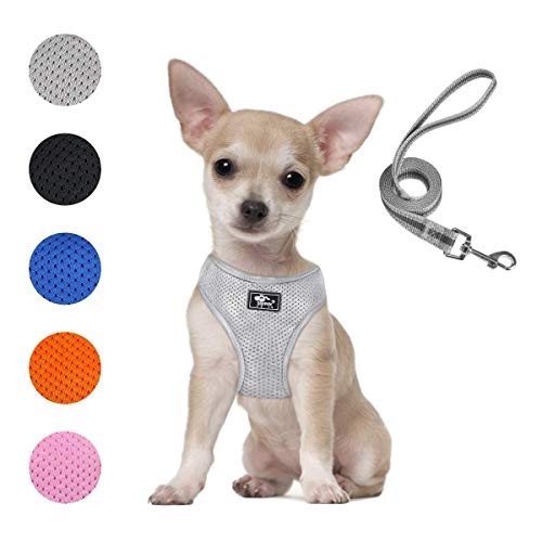 Puppy Harness and Leash Set - Dog Vest Harness for Small Dogs Medium Dogs- Adjustable Reflective Step in Harness for Dogs - Soft Mesh Comfort Fit No Pull No Choke (XS, Grey)