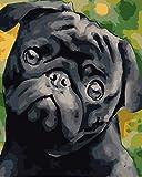 YUHHGFK Pintar por Numeros Perro Animal Negro Pintura al óleo de Bricolaje con Pinceles y Pinturas - para Adultos, niños y Principiantes Decoración del hogar - 40 X 50 cm (Sin Marco)