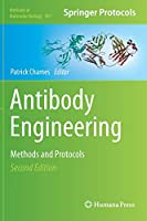 Antibody Engineering: Methods and Protocols, Second Edition (Methods in Molecular Biology (907))