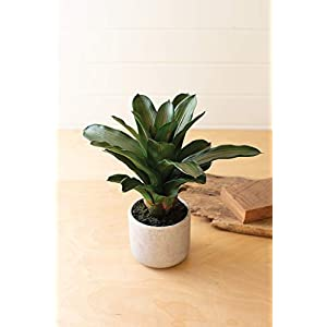 "Silk Flower Arrangements KALALOU CYF1351 16"" Artificial Succulent Plant in A Pot"